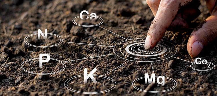 اجزای تشکیل دهنده خاک