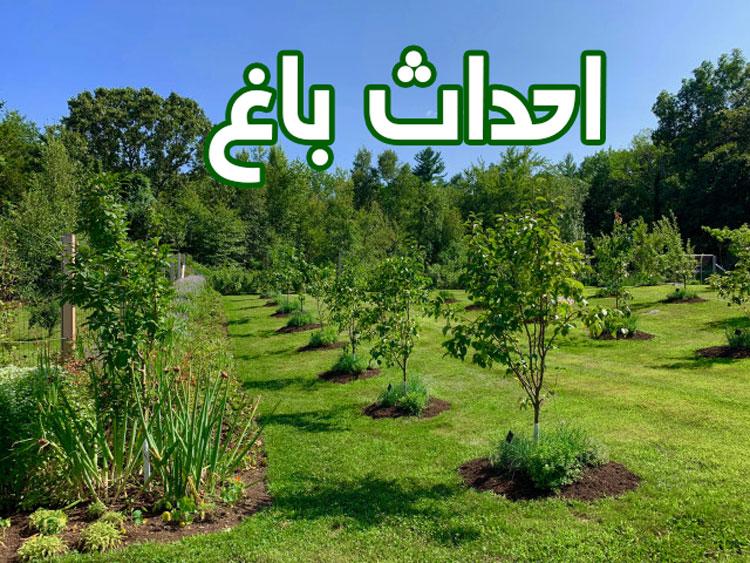 احداث باغ